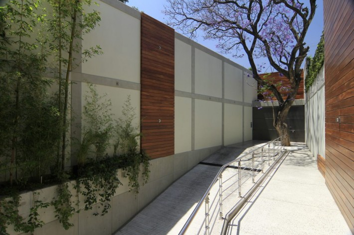 Urban Oasis Jacarand, Mexico City, designed by Sage Architecture